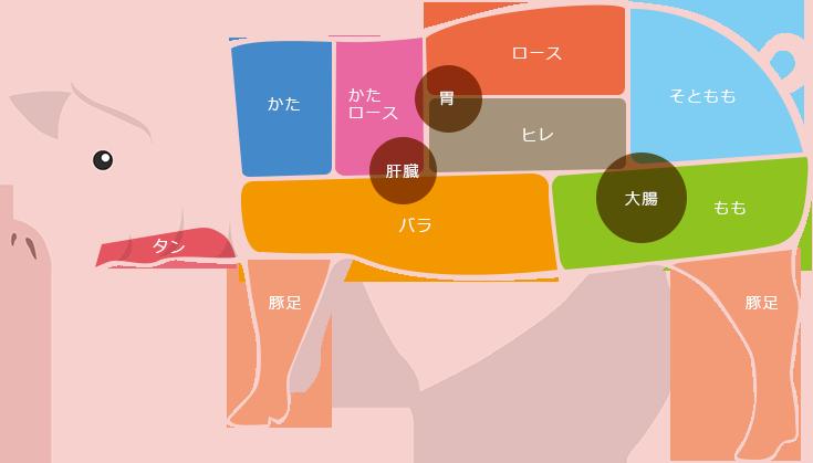豚肉 部位